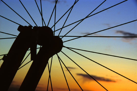bicycle wheel spokes and fork